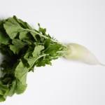 妊婦に大根はおすすめの野菜?切り干し大根にすると良い?